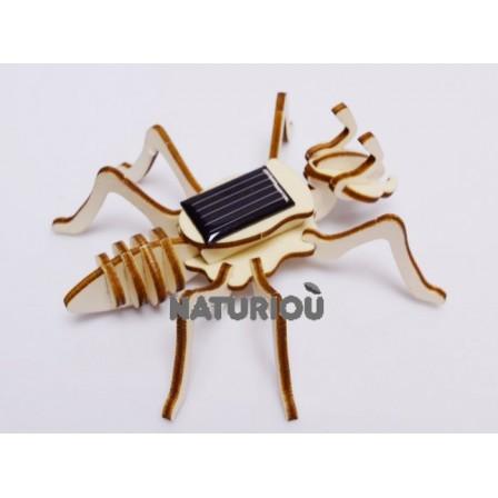 Maquette fourmi solaire Héliobil