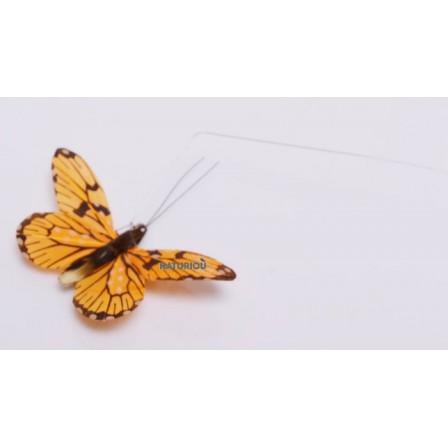 Papillon solaire Héliobil orange